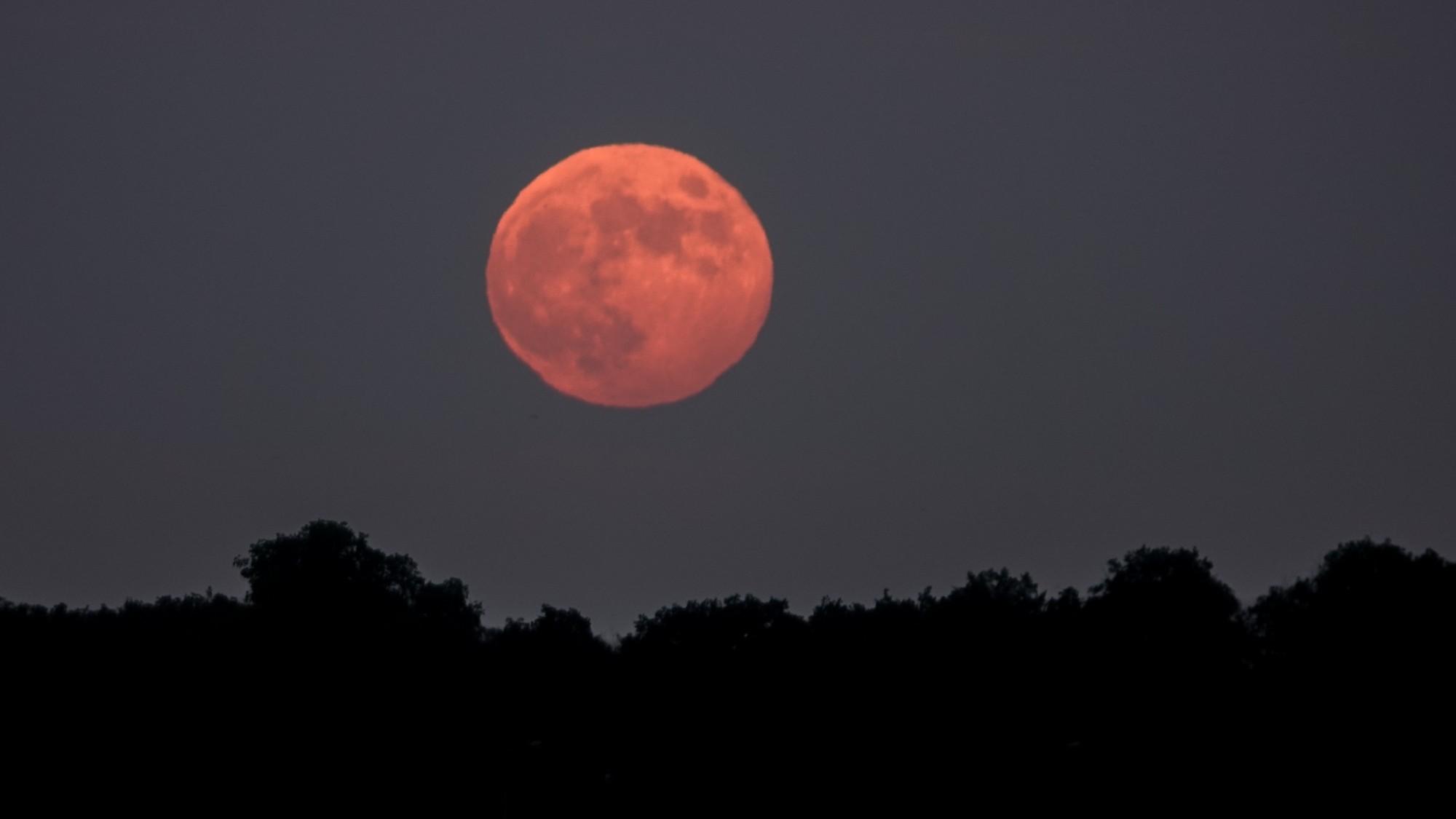 Pełnia Truskawkowego Księżyca - zdjęcie 3