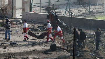 """Ukraiński samolot mógł zostać zestrzelony? Tak twierdzi niemiecki """"Bild"""""""