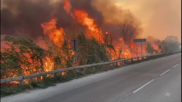 """Francja: ewakuacja turystów w Marsylii. Do kempingów zbliżała się """"ściana ognia"""""""