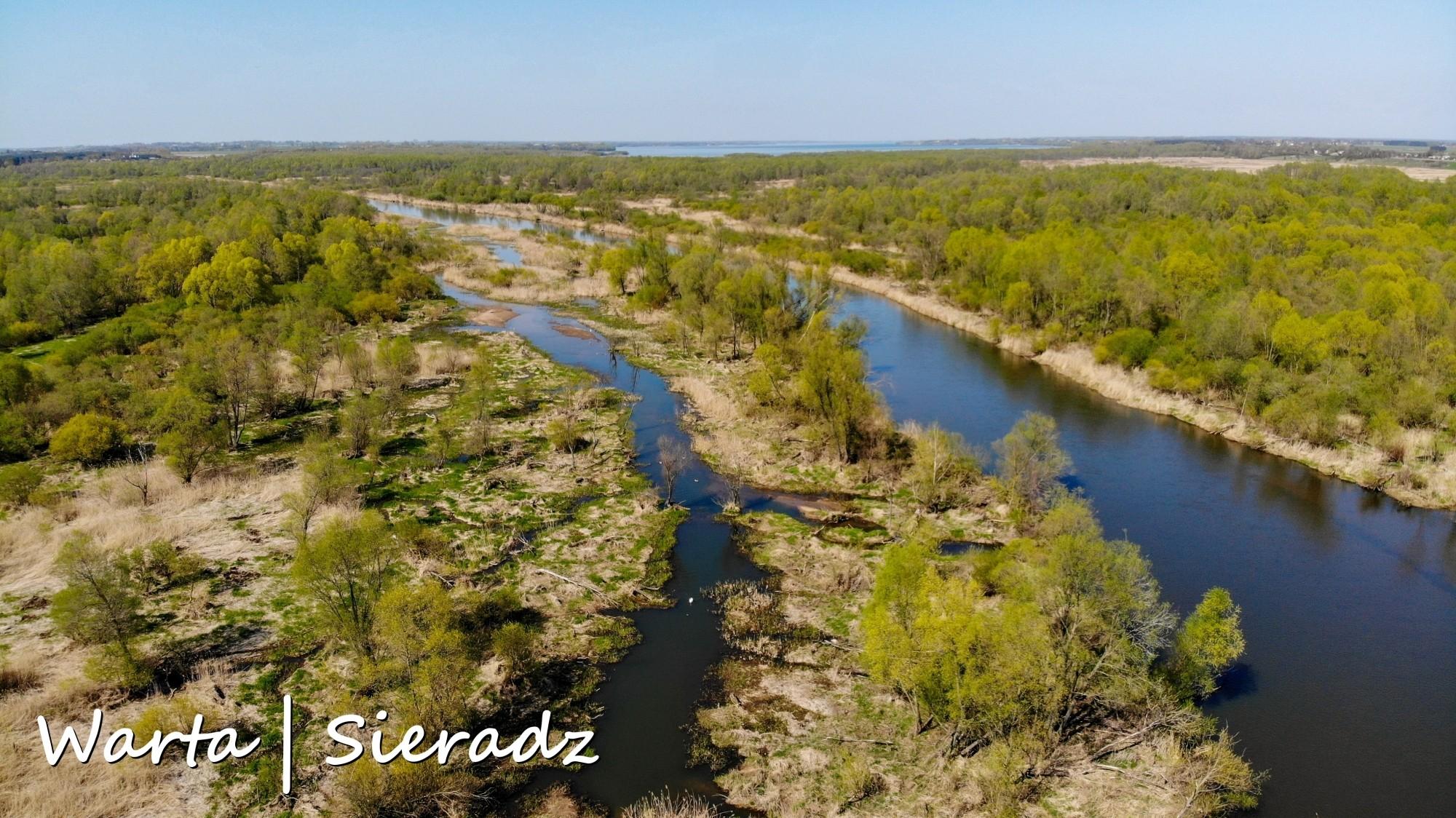 Najbardziej malownicze polskie rzeki widziane z lotu ptaka. Zobacz je na zdjęciach lub filmie w jakości 4K