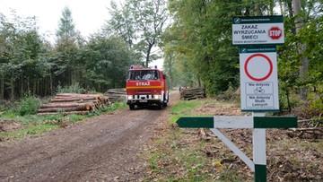 """Dwóch saperów zginęło w eksplozji w Kuźni Raciborskiej. """"Las jest jeszcze pełen niewybuchów"""""""