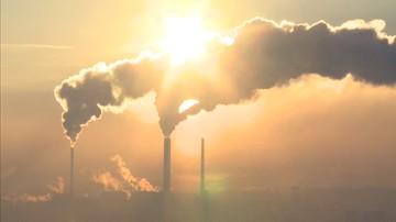 Dowiemy się, jak smog wpływa na dziecięcy mózg. Zbadają to m.in. polscy naukowcy