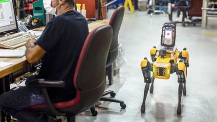 Robo-psy wchodzą do akcji. Spot tym razem pojawił się w fabryce Forda [FILM]