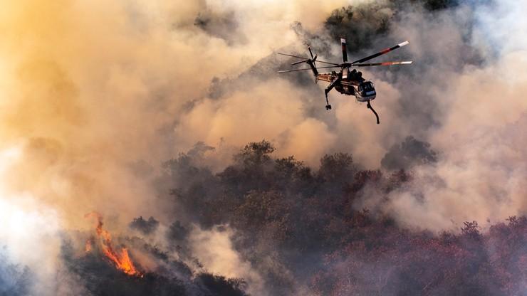 Pożar w Los Angeles. LeBron James i Schwarzenegger ewakuowani