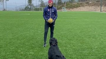 Pies, który gra w siatkówkę! Niesamowity popis na treningu (WIDEO)