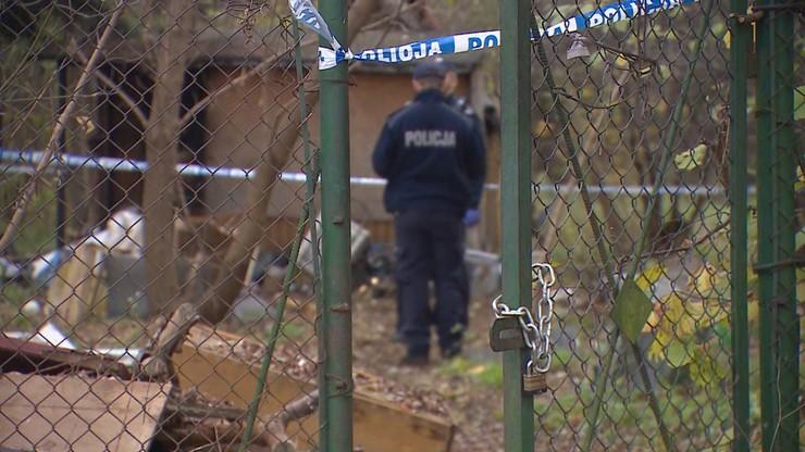 Porzucone dziecko na działkach. 36-latka usłyszała zarzuty