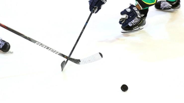 Ekstraliga hokejowa: Trener z przeszłością w NHL szkoleniowcem Unii
