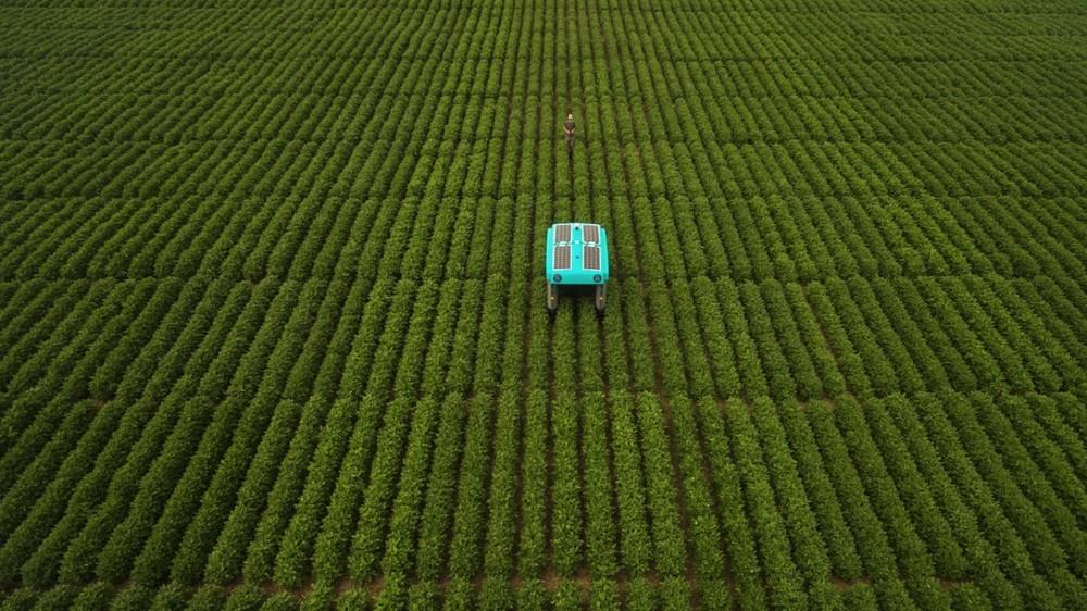 Krok w stronę zrównoważonego rolnictwa. Oto autonomiczny pojazd do kontroli roślin