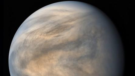 Życie na Wenus? W atmosferze wykryto ślady istnienia żywych organizmów