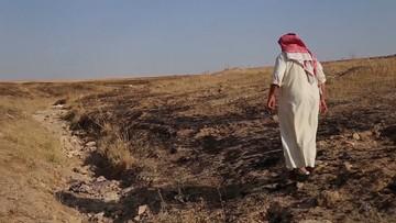 Masowy grób ofiar Państwa Islamskiego. Setki ciał odkryto na pustyni
