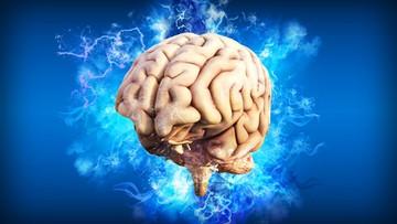 Naukowcy blisko odkrycia nieśmiertelności? Kluczem system mikrokrążenia mózgu