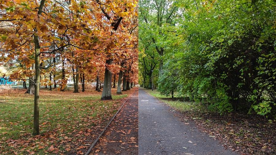 Porównanie jesieni 18 października w 2019 roku (po lewej) i w 2016 roku (po prawej). Fot. TwojaPogoda.pl