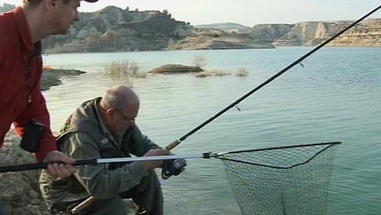 Taaaka ryba - Odcinek 83