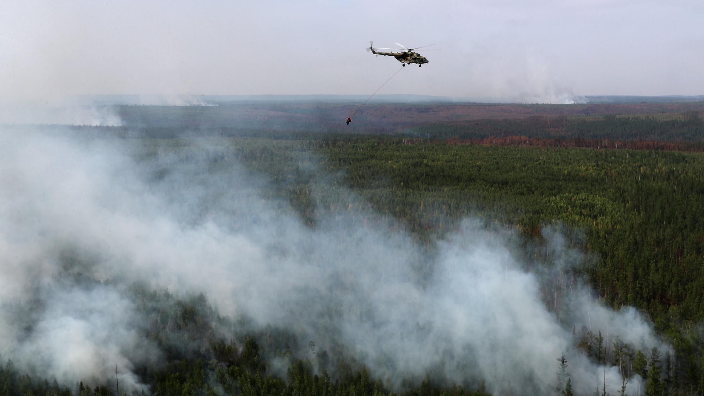 Na Syberii płonie już około czterech milionów hektarów drzewostanu.