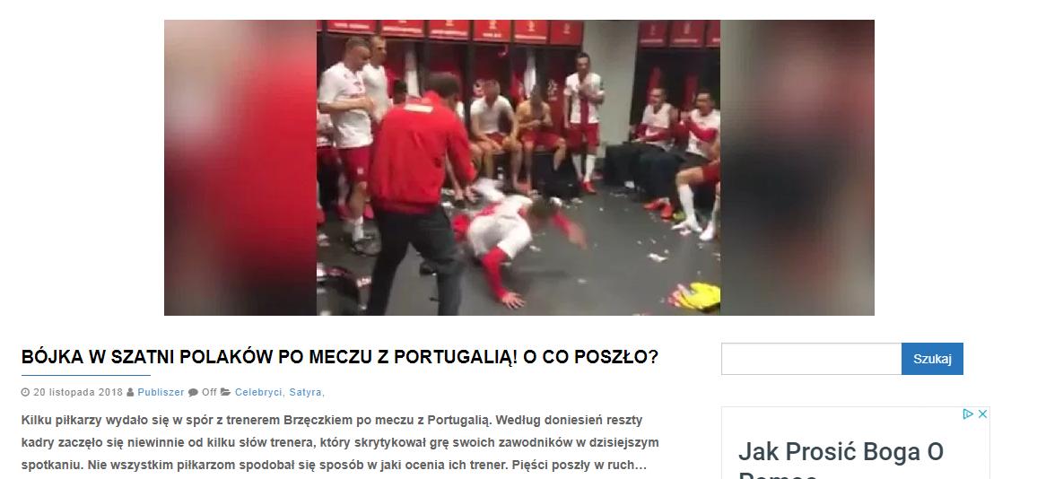 Zrzut ekranu portalu publiszer.pl